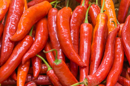 chili peppers: image of havested red chili peppers .