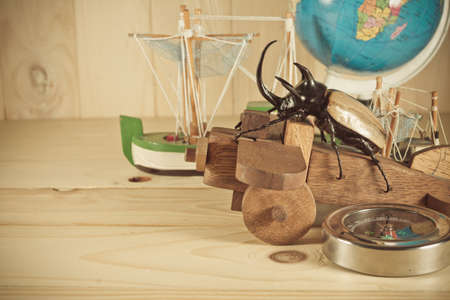 aeroplanes: vintage tone image of five horn beetle and wooden plane on  pine wood table background.(selective focus on beetle)