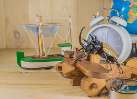 horn beetle: image of five horn beetle and wooden plane on  pine wood table background.(selective focus on beetle)