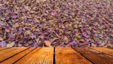 inhibit: image of dry tropical almond leaf on the ground for background texture usage.