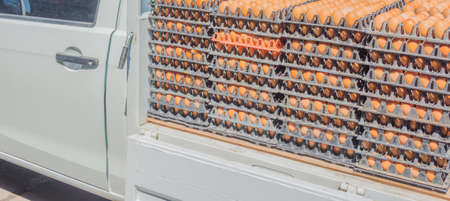 mass storage: image of egg pallets in the truck on day time.