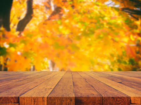 image of wood table and  blue yellow maple tree in background.