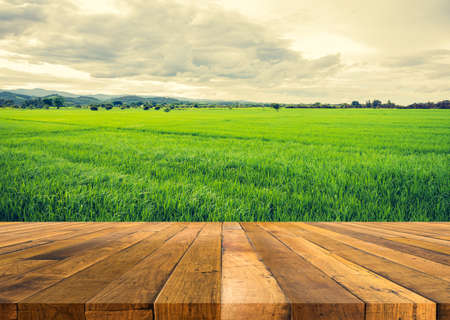 Mesa de madera y imagen de tono vintage de belleza día soleado en el campo de arroz con el cielo y la montaña en segundo plano. Foto de archivo