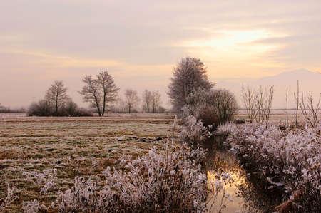 traquility: Frozen countryside outside Ljubljana