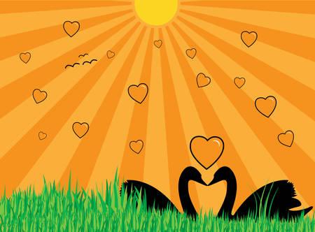 Ilustración de dos cisnes mostrando sus siluetas, muchos corazones, la hierba y el sol con rayos  Foto de archivo - 2679002