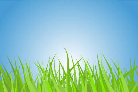 Illustration of a green grass with nice blue sky and rising sun. Vector
