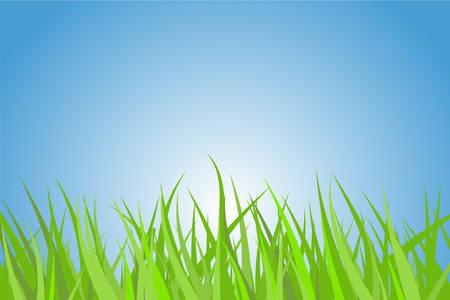 rising sun: Ilustraci�n de una hierba verde con bonito cielo azul y sol naciente.