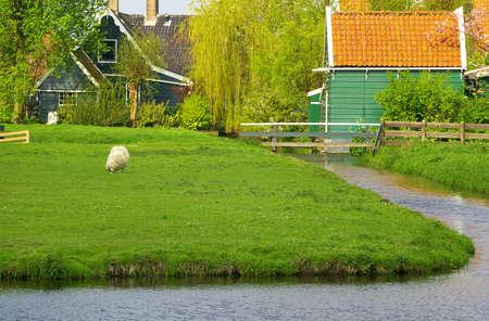 zaanse: Afbeelding van een oud Nederlands dorp Zaanse Scans