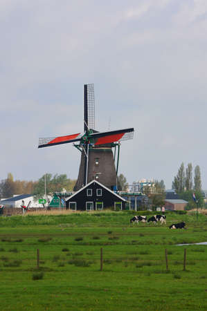 Picture of dutch windmill with nice green grass in front of them photo