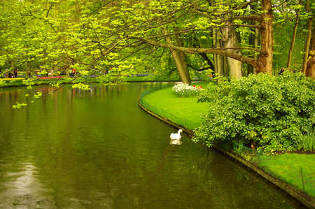 Picture of a beautiful park with a stream. Stock Photo - 3144726