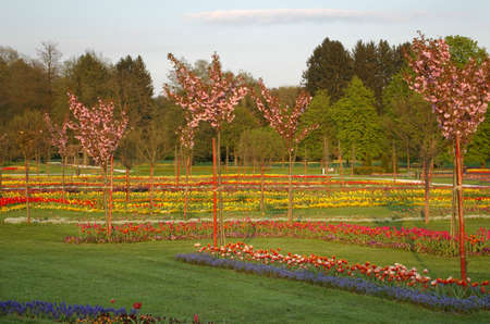 Picture of a beautiful park full of flowers Stock Photo - 3148496