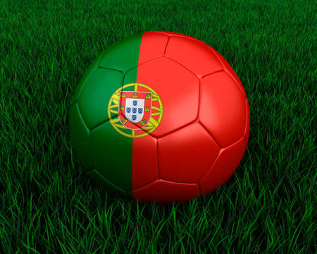 portugese: Portugese soccer ball in grass.