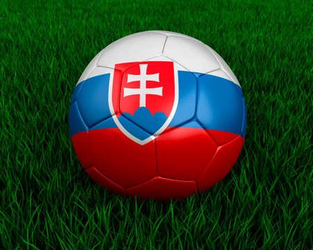 slovakian: Slovakian soccer ball in grass.