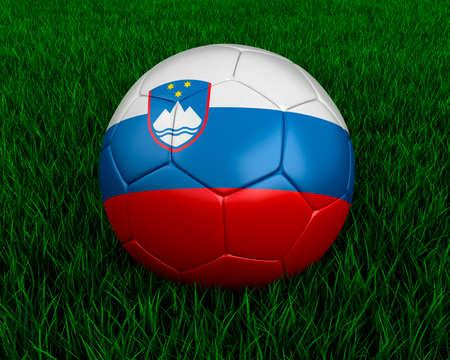 slovenian: Slovenian soccer ball in grass.