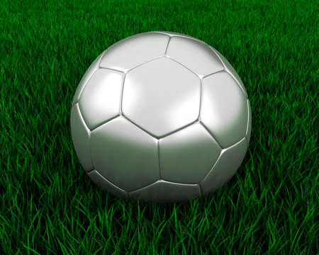 Silver soccer ball in grass. Stock Photo - 7140090