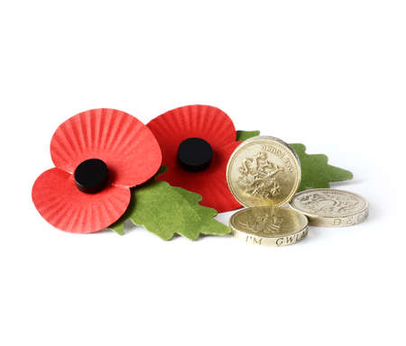 Studio macro of two remembrance poppies with UK pound coins against a white background. Copy space. photo