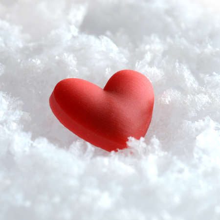 Macro image of a red heart lying on fresh snow. Square crop with copy space. photo