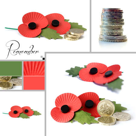 remembrance day poppy: Studio macro montage of war poppies images and example colour swatch