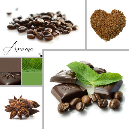 chocolate mint: Studio macro montage of aromatic images with example colour swatch