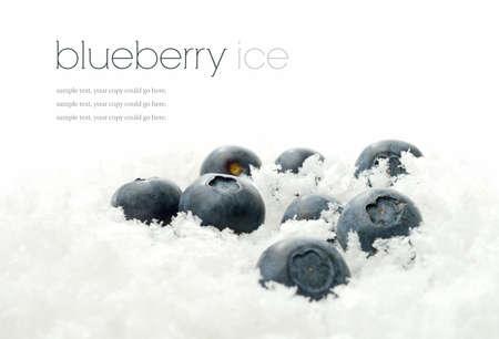 Studio macro of fresh ripe blueberries buried in fresh snow photo