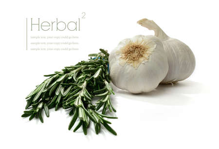 Studio macro of garlic clove and fresh rosemary stems with soft shadows on a white surface. Copy space. Standard-Bild