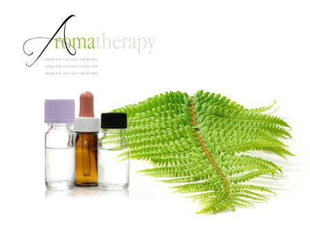 clinically: Concetto di immagine raffigurante trattamenti di aromaterapia con bottiglie di farmaci e una foglia di felce selvatica su una superficie bianca clinicamente pulita. Copiare lo spazio.