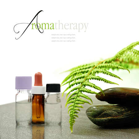 Concept image of aromatherapy treatments with medication bottles, pebbles and bracken leaf on a stone surface. Copy space. Standard-Bild