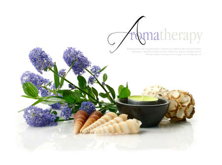 Concept image depicting aromatherapy treatments with Ceanothus (Californian lilac) sea shells, botanticals and an aromatic candle against a clean white surface. Copy space.