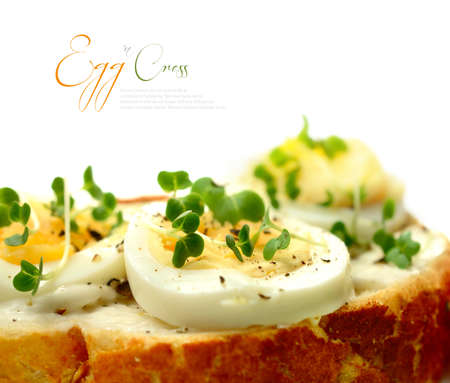 albumin: Macro of freshly-made egg and mustard cress open sandwich  Shallow depth of field with copy space on a white background  Perfect for a menu, poster or web page promoting quality and delicious food  Stock Photo