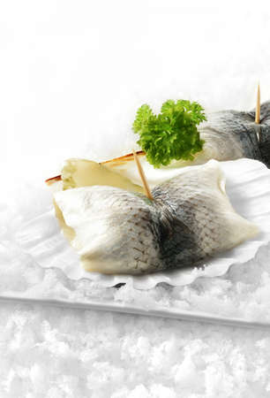 settled: Chilled marinated herring rolls, or roll mops, with white onion and gherkins with a parsley garnish in scallop shells settled on a bed of snow  Copy space