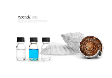 Sea shells and aromatherapy oils against a white background photo