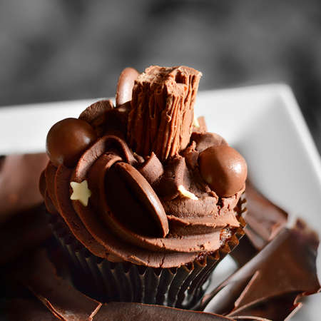 Delicious chocolate cupcake with all the trimmings. Ideal image for your dessert menu design. photo