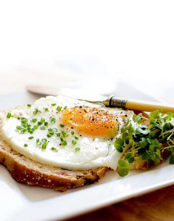 Poached egg, sunny side up, on a multi-grained slice of muesli bread seasoned with chopped chives, cress and black pepper  Copy space  photo