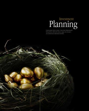 本物の鳥の巣を表す貯蓄と投資の黄金の卵は創造的に点灯します。 写真素材