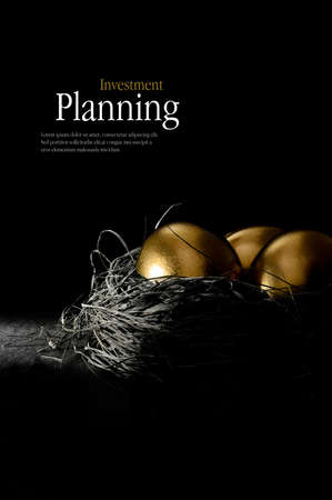 nest egg: Creatively lit golden eggs in a genuine bird nest representing savings and investments.