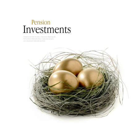 retirement nest egg: Golden goose eggs placed in a authentic looking grass nest against a white background. Concept image for pension savings. Copy space.