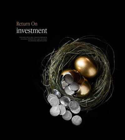 coin silver: Creatively lit concept image for pension fund management and return on investments. Broken gold goose eggs in a nest spilling silver coins. Aerial view with copy space.