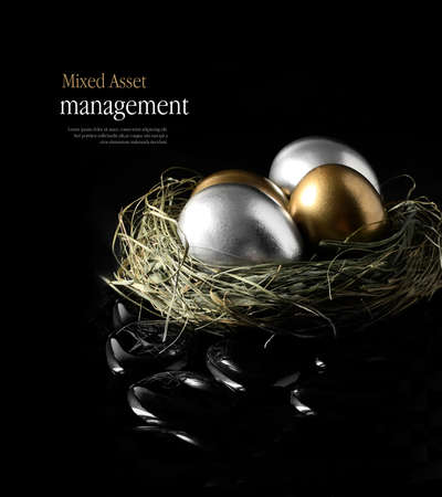 Concept image for mixed asset financial management. Mixed gold and silver goose eggs in a grass birds nest against a black background. Copy space. Banque d'images