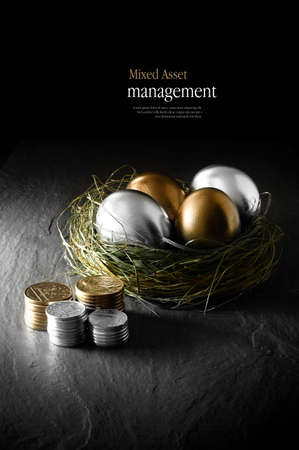 Concept image for mixed asset financial management. Mixed gold and silver goose eggs in a grass birds nest against a black background. Copy space. Stockfoto