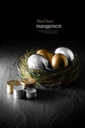 agente comercial: Imagen conceptual de la gesti�n financiera de los activos mixta. Mezcla Oro y los huevos de gallina de plata en un nido de p�jaros hierba contra un fondo negro. Copiar el espacio.