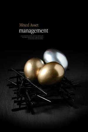 Concept image for mixed asset financial management. Mixed gold and silver goose eggs in a stark birds nest against a black background. Copy space. Standard-Bild