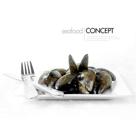 Concept image for seafood. Arranged and plated mussel shells against a white background. Copy space. photo