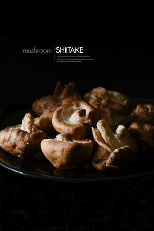 Creatively lit uncooked raw Japanese Shiitake mushrooms in a black bowl against a black background. Copy space.