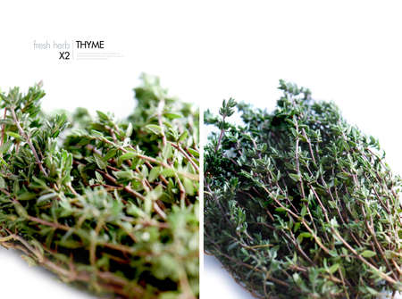varying: Dual image of fresh thyme herbs from varying perspectives, one macro and one close-up. Copy space.