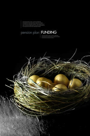 wage: Concept image for pension fund management. Gold eggs in a grass birds nest against a black background. Copy space.