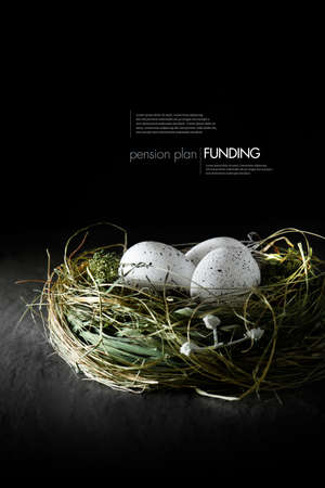 financial planner: Concept image for financial asset management. White speckled  eggs in a grass birds nest against a black background. Copy space. Stock Photo