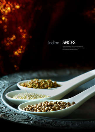 Creatively lit image of common Indian cooking spices against a sparkling red and black background. Concept image for Indian cuisine. Copy space. Standard-Bild