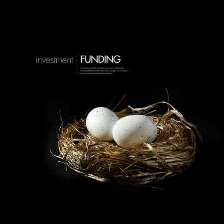 nido de pajaros: Nido de oro con huevos blancos manchados contra un fondo negro. Imagen del concepto de planes de pensiones, la inversi�n y el crecimiento. Alojamiento generosa para copiar el espacio.