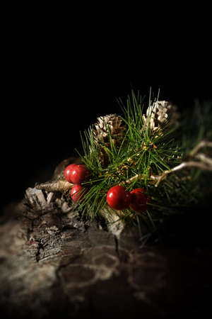 lit image: Creatively lit, festive concept image for either Christmas or Thanksgiving. Fir tree needles and cones with red berries against a dark background in a rustic setting. Generous accommodation for copy space.
