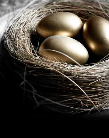 gold eggs: Creatively lit bird nest with gold eggs, shot in natural light. Concept image for pension investments, finance, savings or retirement planning. Accommodation for copy space.